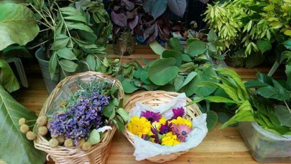 piante e fiori per ecoprint